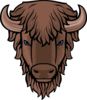 Cse logo bison head only